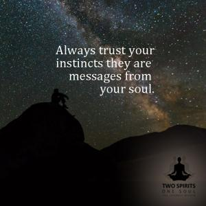 always-trust-your-instincts-they-are-messages-from-your-soul