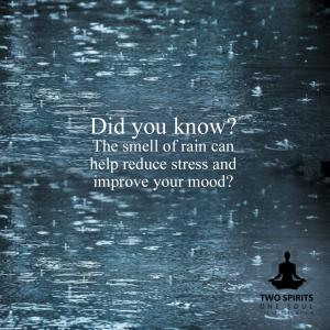 did-you-know-the-smell-of-rain-can-help-reduce-stress