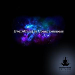 everything-is-consciousness