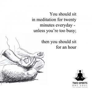 you-should-sit-in-meditation-for-twenty-minutes-everyday-unless-youre-too-busy-then-you-should-sit-for-an-hour